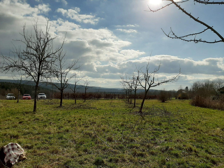 Wetter Osburg