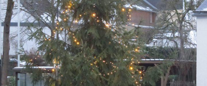 Neue Lichterkette für Weihnachtsbaum am Marktplatz
